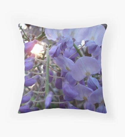 Wysteria Sunset Throw Pillow