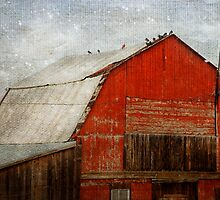RED BARN AND FIRST SNOW by TheresaTahara