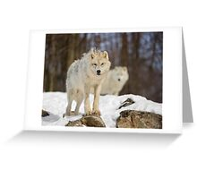 Being Watched Greeting Card