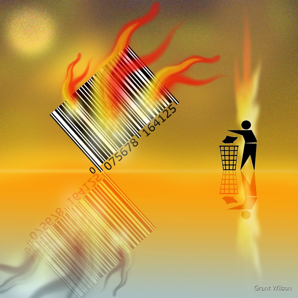 Fire Barcode in the mirror by Grant Wilson