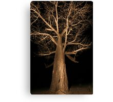 Ancient Giant - Boabab in the Delta Canvas Print