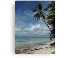 Dominican Republic Beach Canvas Print