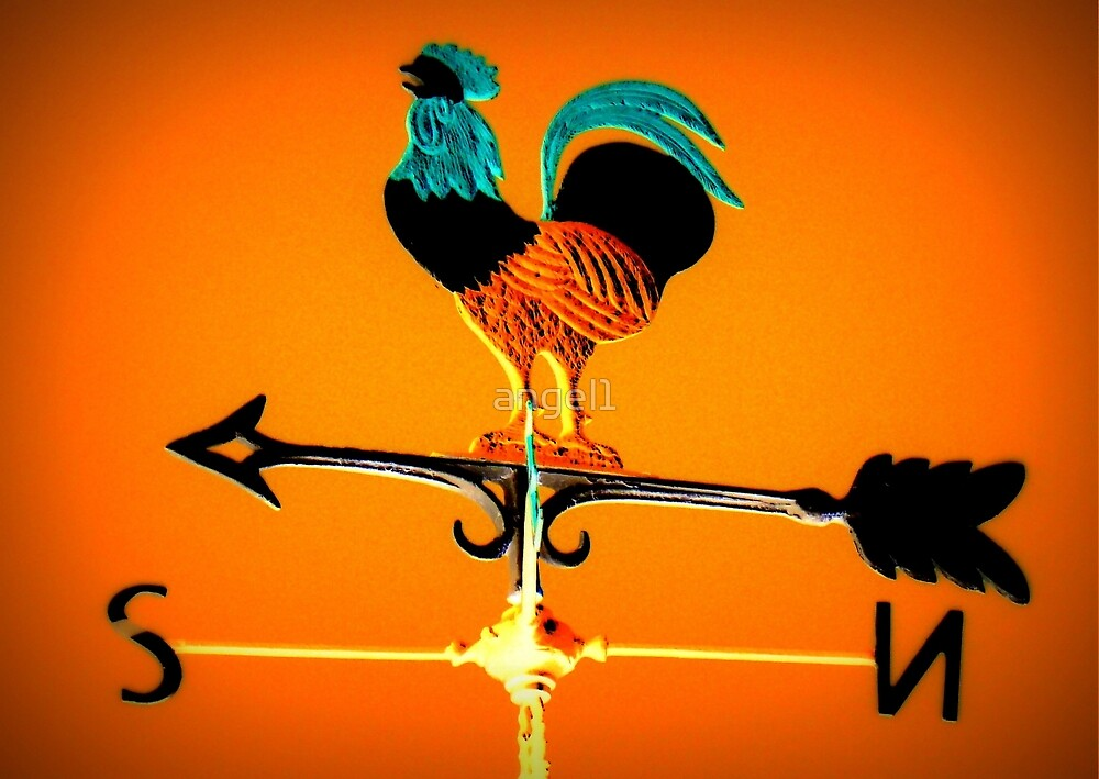Bavarian Weather Vane by ©The Creative  Minds
