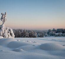 Winter Landscape in Finland by Ville Vuorinen