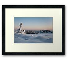 Winter Landscape in Finland Framed Print