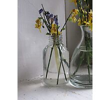 Flowers in a Glass Jar Photographic Print