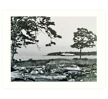 BC Ferry from Pipers Lagoon, Nanaimo Art Print