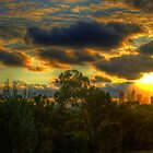 Melbourne Sunset  by Robert  Welsh