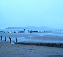 Tungsten coastline. by jams