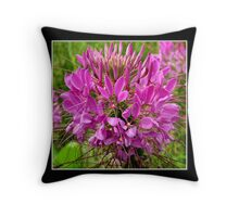 Pink Cleome Throw Pillow