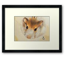 Bubba the Hamster Framed Print