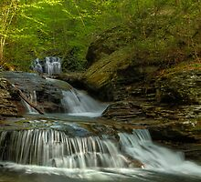 Ricketts Glen by Wojciech Dabrowski