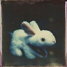 A Harmless Little Bunny by Jill Auville