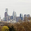 Philadelphia Skyline by Rebecca  Haegele