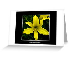 Lily: Yellow Greeting Card