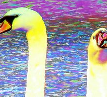 Swan pair macro by ♥⊱ B. Randi Bailey