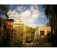 Sky Above a Garden in Alphabet City East Village Photographic Print