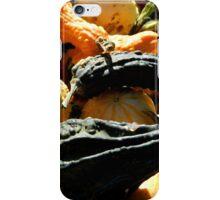 Autumn Gourds   ^ iPhone Case/Skin