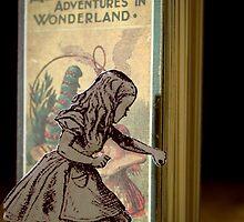 Alice in Wonderland. by Candy-Von