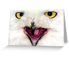Owl Close UP Greeting Card