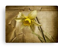 Spring is Fading Canvas Print