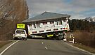 Moving House, Kiwi style! by Odille Esmonde-Morgan