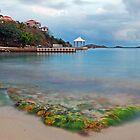 Secret Harbor by Leon Heyns