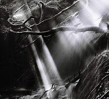 Light Water by phoenixpixx
