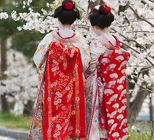 Geiko & Sakura 2 by Sam Ryan