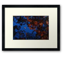 Autumn Blues Dream Framed Print
