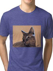 Big Kitten Tri-blend T-Shirt