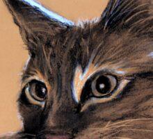 Big Kitten Sticker
