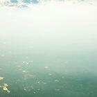 plane view july08(51) by Betsy Krooke