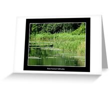Pond #1 (Beaver Island State Park) Greeting Card