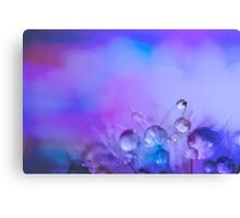 Sprinkles and Dewdrops Canvas Print