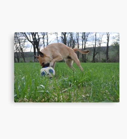 Doggy Dribble  Canvas Print