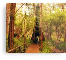 Walking through a tree Metal Print