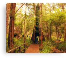 Walking through a tree Canvas Print