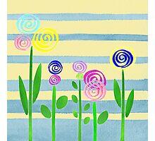 Lollipop Flower Bed Photographic Print
