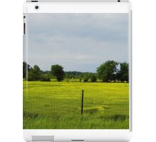 Cows  In Summer  Pasture iPad Case/Skin