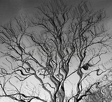 Bendy Tree by GloKeys