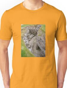Skara Brae, outer section Unisex T-Shirt