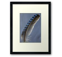Feather magic Framed Print
