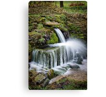 """The Crocodile"", Compton Abdale, The Cotswolds, England Canvas Print"