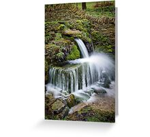 """""""The Crocodile"""", Compton Abdale, The Cotswolds, England Greeting Card"""