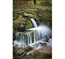 """The Crocodile"", Compton Abdale, The Cotswolds, England Photographic Print"