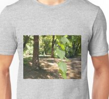 Selective focus on a young branch of a tree with leaves Unisex T-Shirt
