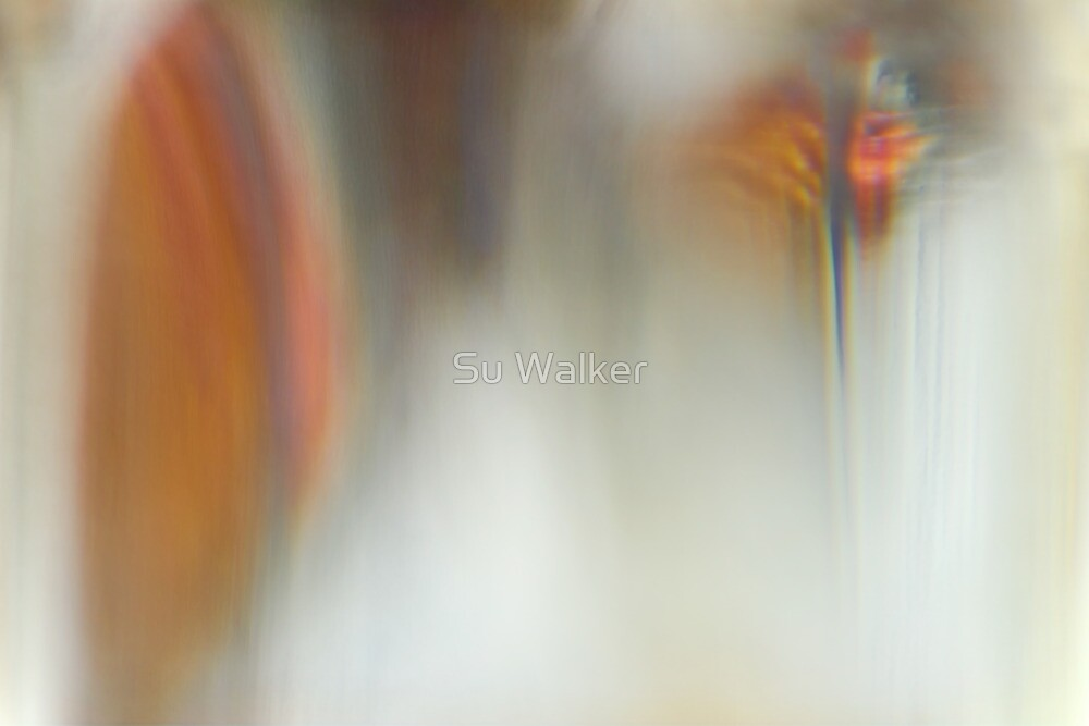 Glass Abstract #2 Macaw by Su Walker