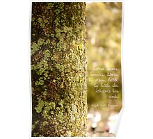 [Life] Effortless, perfect nature Poster