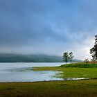 A New Island - Lake Tinaroo by Rob Brown
